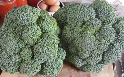 My brilliant broccoli