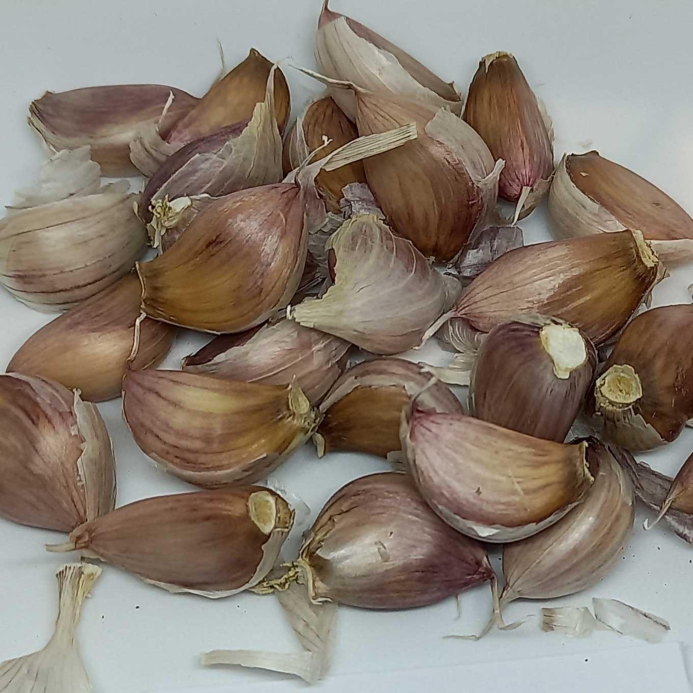 spanish red garlic cloves
